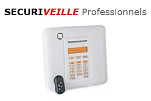 securiveille-professionnels